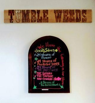 store photos Tumbleweeds - Newport