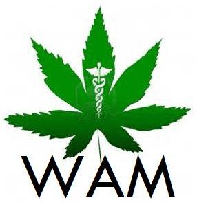 store photos WAM (Wickenburg Alternative Medicine)