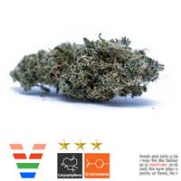 feature image ACE Valley Sativa