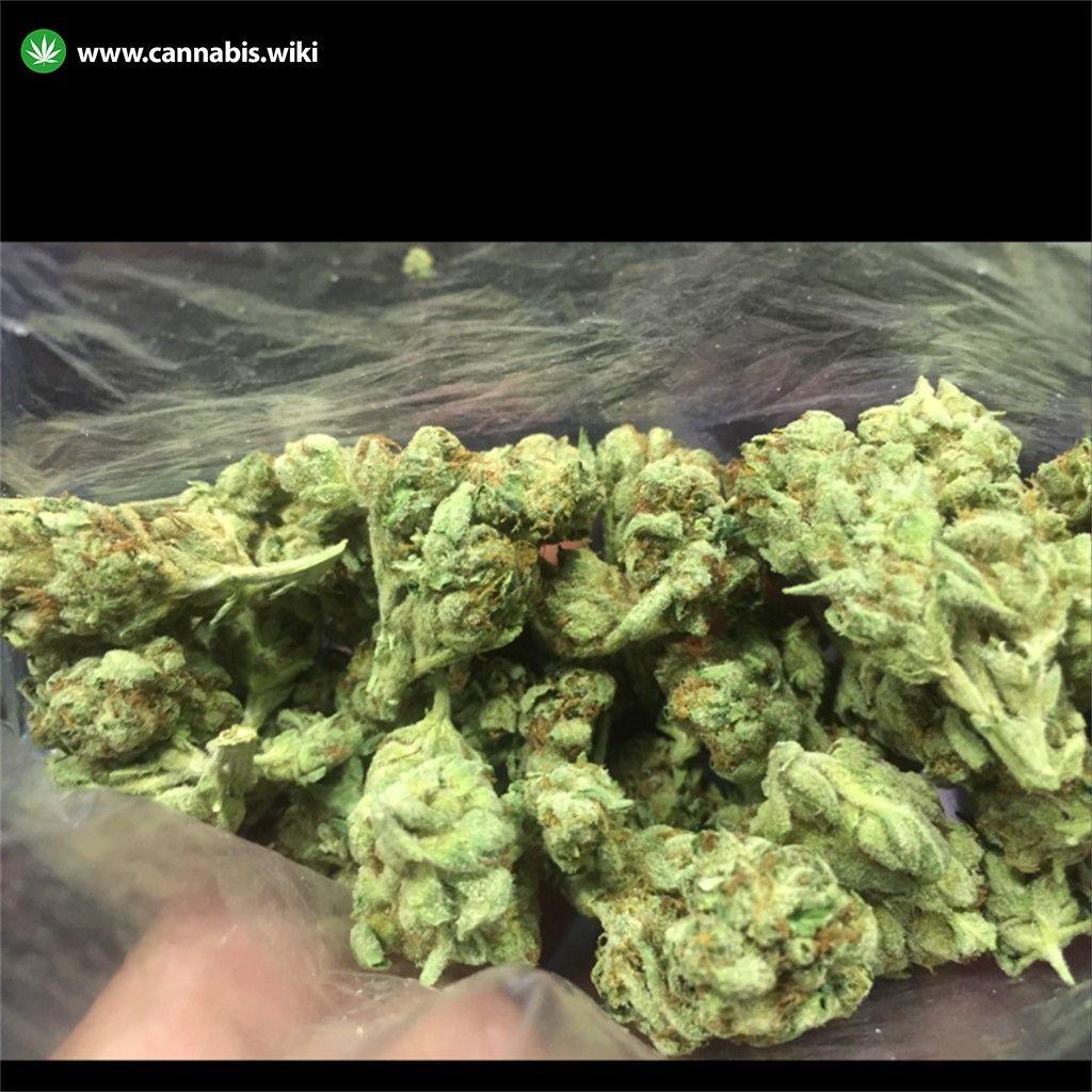 Fire Alien Kush Strain | Cannabis Wiki