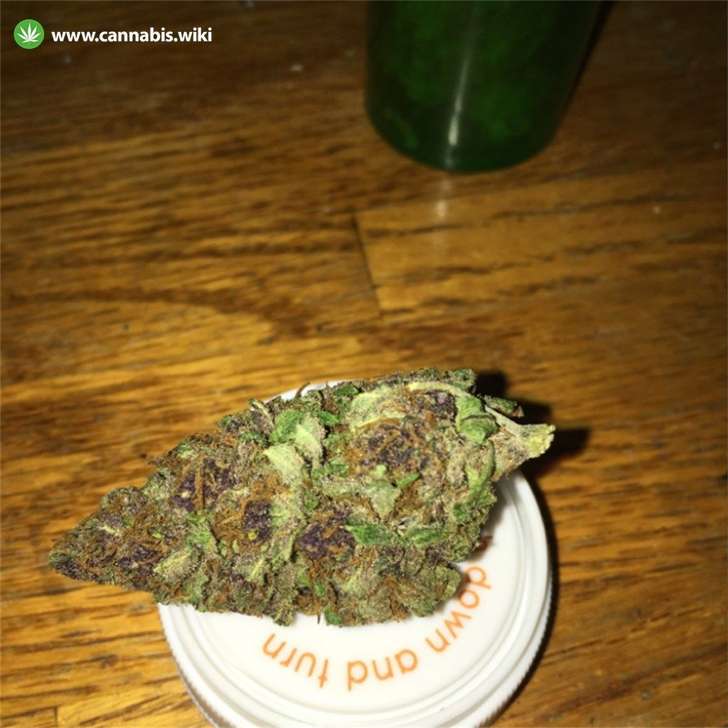 Cannabis Wiki - Strain Ace of Spades - Ace - Indica