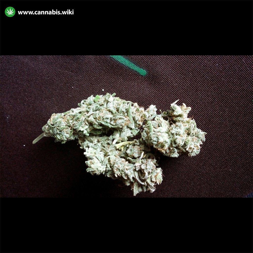 Northern Specialty Health cannabis store menu | Cannabis Wiki