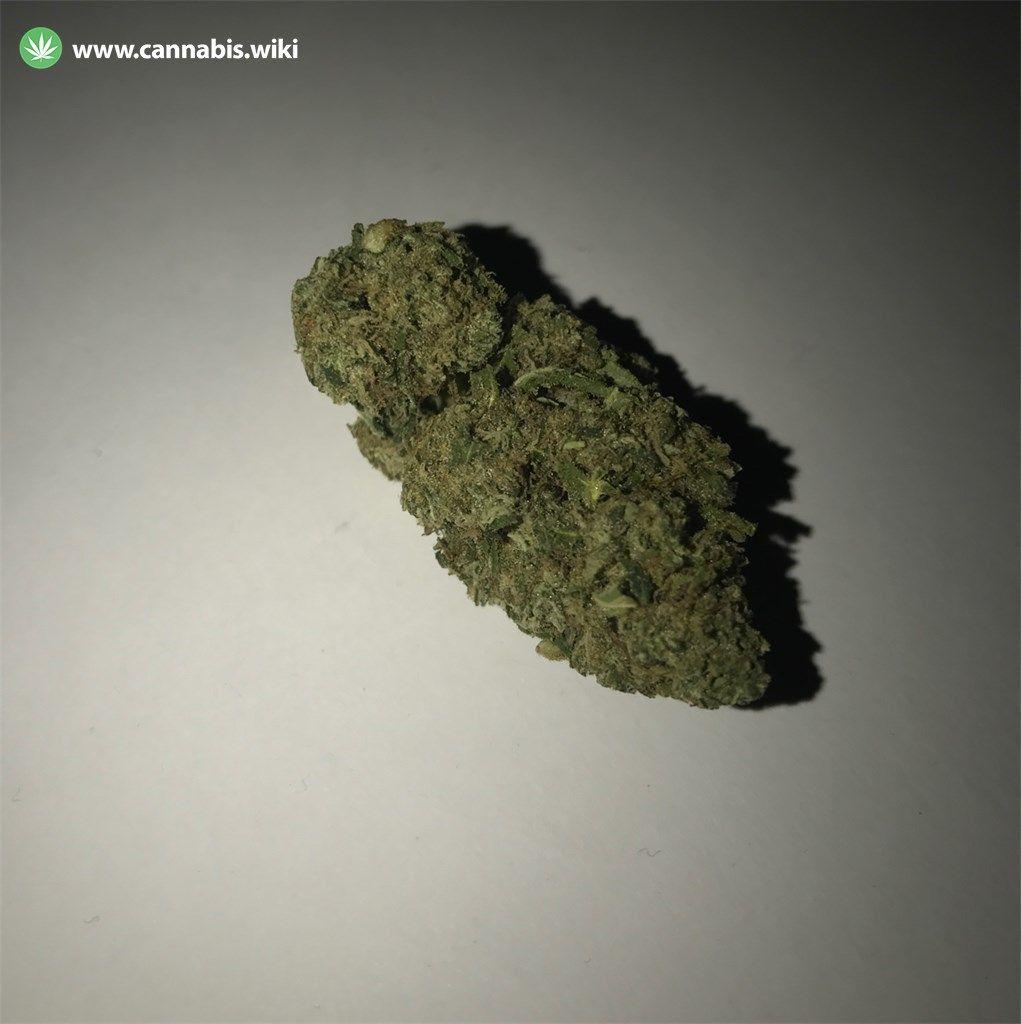 Death Star Strain | Cannabis Wiki
