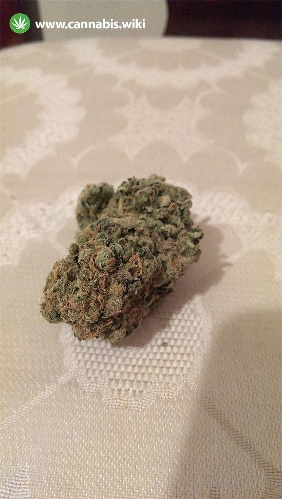 Cannabis Wiki - Strain Devil Fruit - Df - Indica