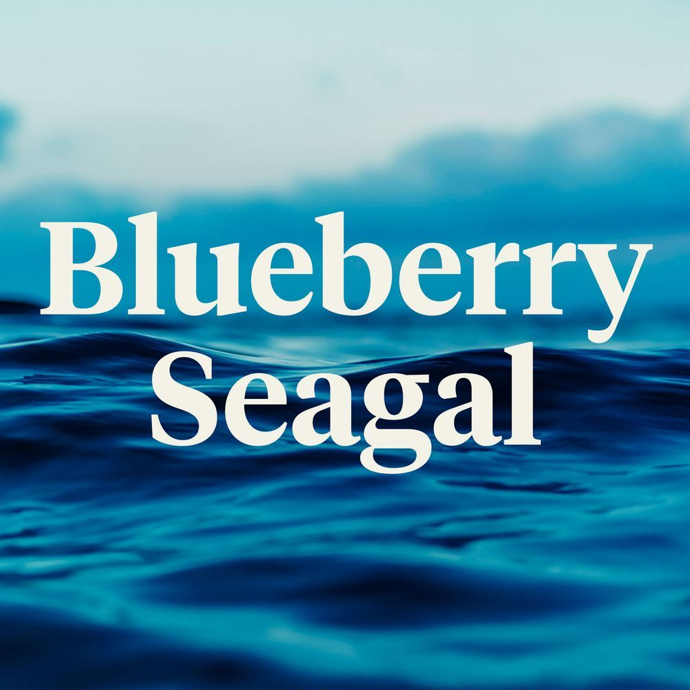 feature image Blueberry Seagal