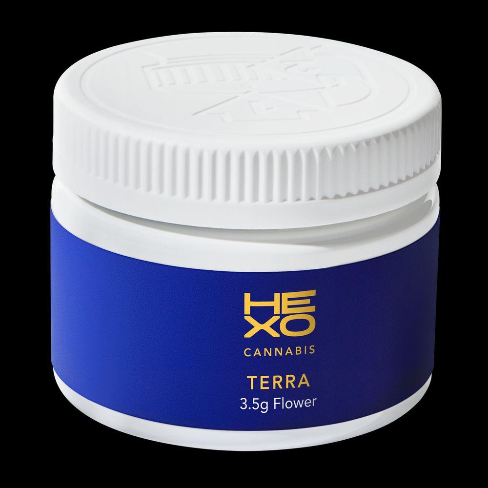 feature image Terra